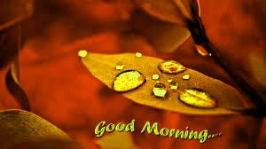 gd mrng Wallpaper Images Photo Pictures HD Free Download For Whatsaap