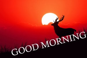 Good Morning Images Wallpaper Pics With Sunrise