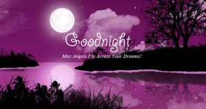 Good Night Images Pictures Download