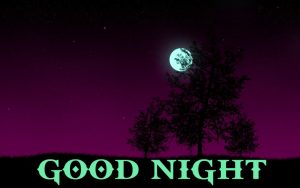 Good Night Images Photo Pictures For Whatsaap HD Download