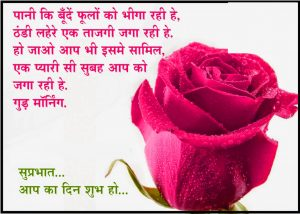 Hindi Quotes Good Morning Images Photo Pics Download