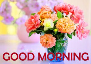Flowers Good Morning Images Photo Pics HD Download