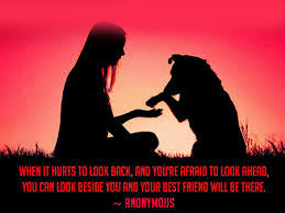 Friendship Images Photo Wallpaper Download With Quotes