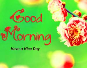 gd mrng Images Photo Pictures Free Download