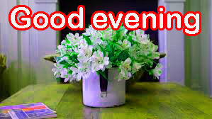 Good Evening Images Wallpaper Photo Pictures With Flower