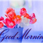 122+ Flowers Good Morning Images Wallpaper HD Download