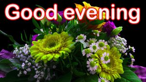 Good Evening Images Wallpaper Pictures HD Download