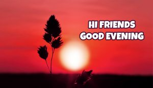 Good Evening Images Wallpaper In Hindi Download