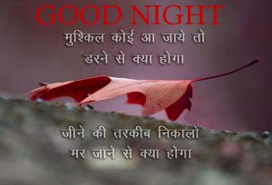 Good Night Images Photo Pictures Download