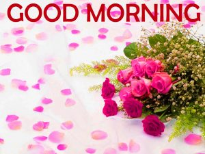 Flowers Good Morning Images Pictures Wallpaper Download