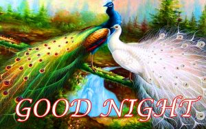Gn Love Photo Images Pictures Wallpaper Download