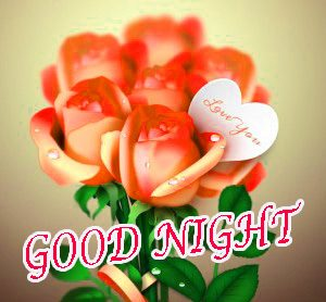 Gn Love Pictures Images Photo HD For Whatsapp