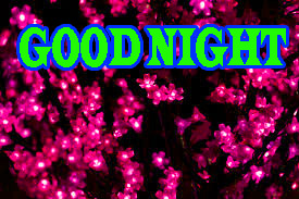 New good night Images Photo Pics Download for Whatsapp