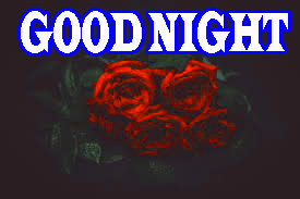 New good night Images Wallpaper Photo Pics Download