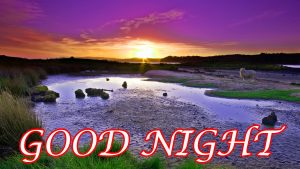 Good Night Pictures Wallpaper Images HD