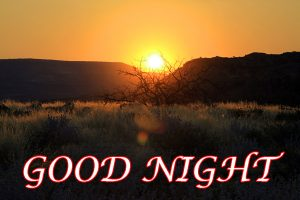Good Night Photo Images Pictures Wallpaper Download