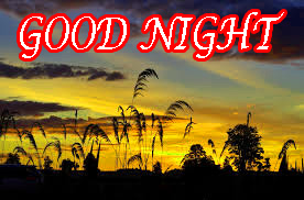 Latest Gud Night Wallpaper Pictures Images Photo HD