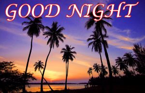 Latest Gud Night Pictures Images Photo Download For Facebook