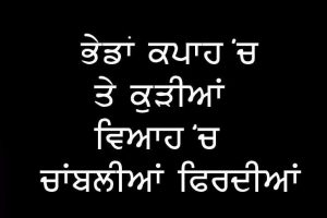 Punjabi Love Status Wallpaper Images Pictures HD For Whatsapp