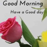 very nice good morning images wallpaper pictures photo hd download