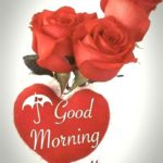 love good morning images pictures photo wallpaper free hd download