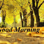 Natures good morning images wallpaper pictures photo pics free hd download