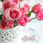 latest flower good morning images pictures photo free download