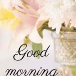 latest happy good morning images pictures photo download