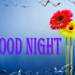 Good Night images wallpaper photo pictures pics free hd download