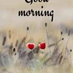 latest good morning images photo pictures pics free download