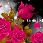 latest nice flower good morning images photo wallpaper download