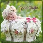 cute good night images wallpaper pictures photo hd download