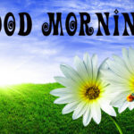 latest nice good morning images photo wallpaper download