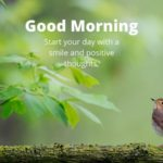 Quotes good morning images pictures wallpaper photo download