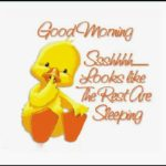 best funny good morning images photo wallpaper pics hd download