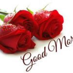 love good morning images wallpaper pictures pics photo hd