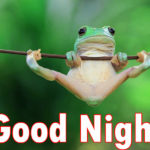 very latest funny good night images wallpaper pictures pics free hd download