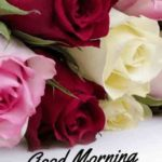 good morning images wallpaper pictures photo hd download