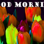 Good Morning images for nature wallpaper pictures photo pics free download