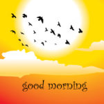 good morning images photo wallpaper pictures hd download