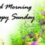 best love good morning happy Sunday pictures pics wallpaper HD