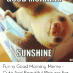 new funny good morning images photo pics wallpaper pictures hd