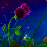 nice red rose good night images wallpaper pictures photo download