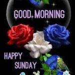 nice lover good morning happy Sunday wallpaper pics pictures free download