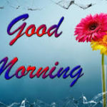 nice latest love good morning images photo wallpaper free download
