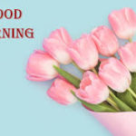 best good morning images photo wallpaper pics free download