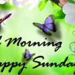 nature good morning happy Sunday wallpaper images pics download