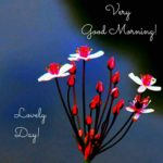 new lover good morning images wallpaper pictures photo hd