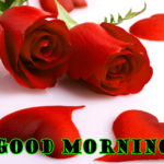 best Red rose good morning images photo wallpaper free download