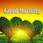 best love nature good morning images photo wallpaper pics free download